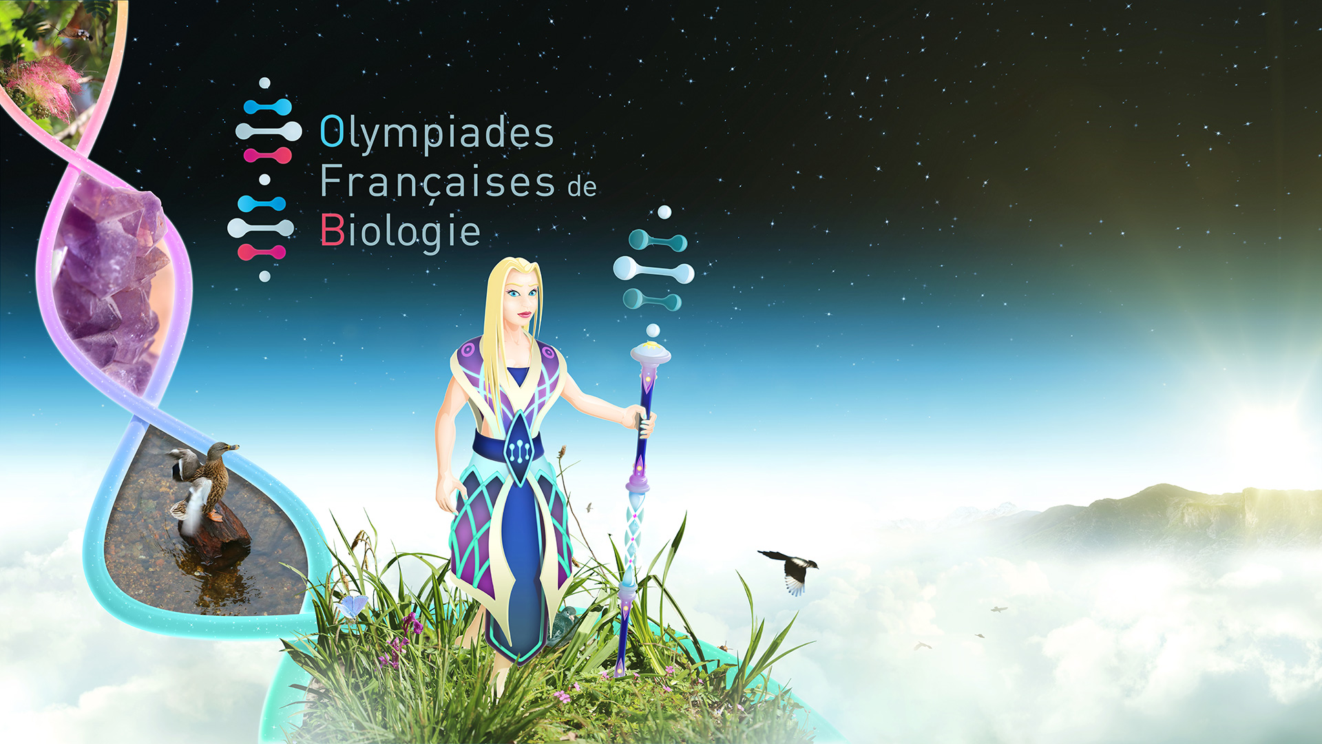 ofb_cymatic_wp